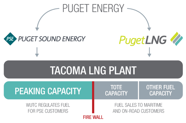Puget LNG ownership structure